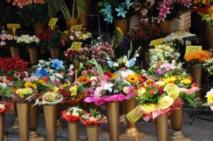 Kwiaciarnia we Wrocławiu